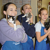 Middle School Students with cats